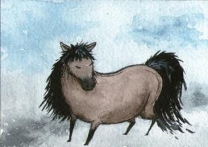 431_chubby_horse