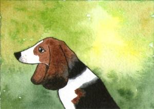 432_hound