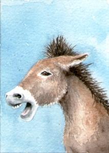442_donkey