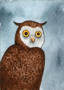 451_owl